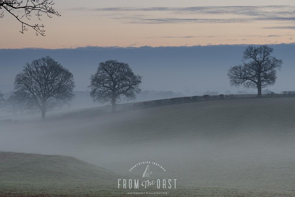 Morning mists 1000px.jpg