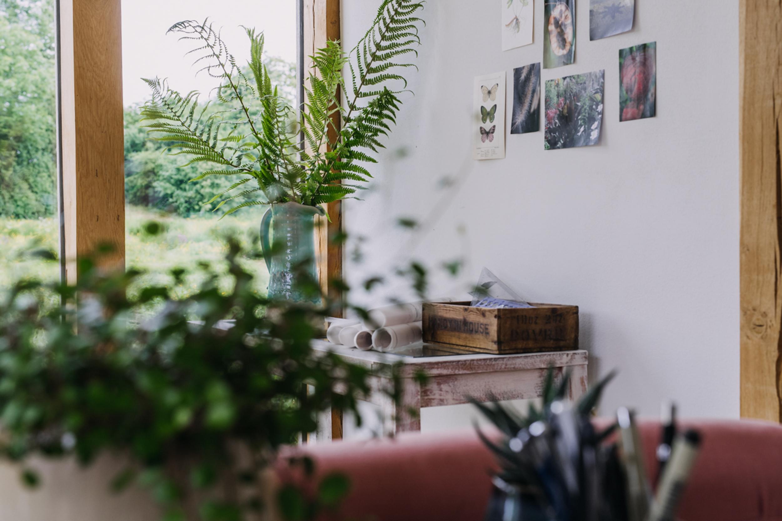 Growthfully brand photography by Eva Nemeth