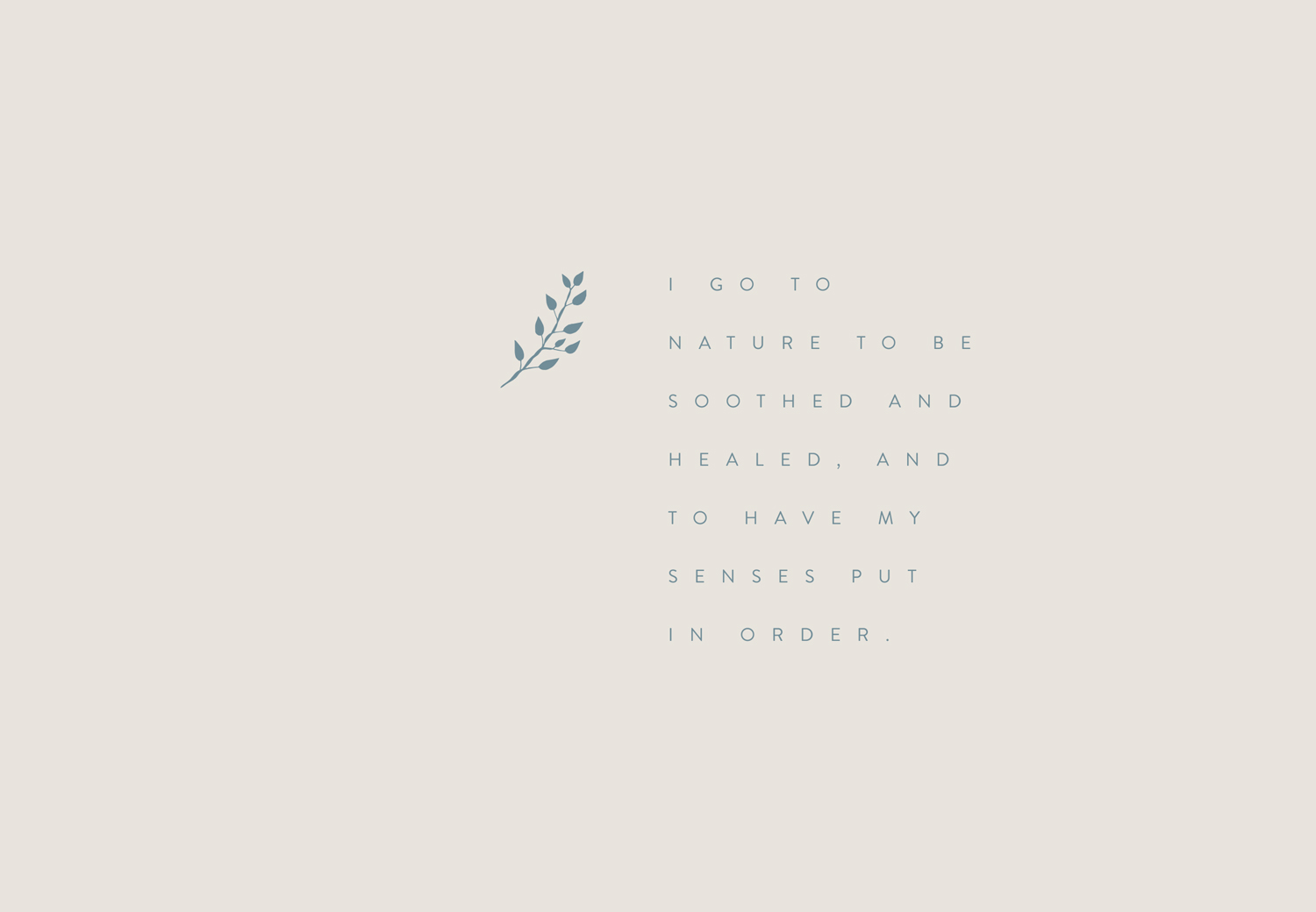Branding element from brand identity designed for Alice Stewart by Ditto Creative boutique branding agency