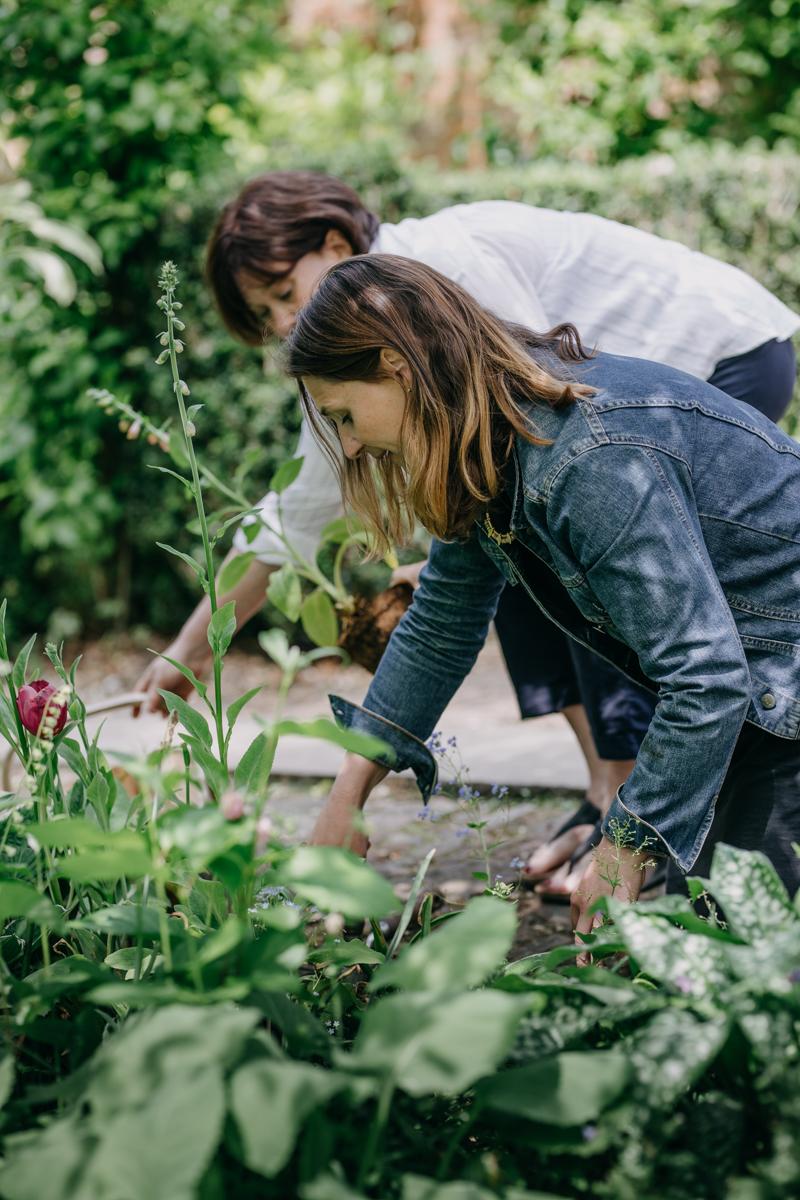 garden_22.jpg