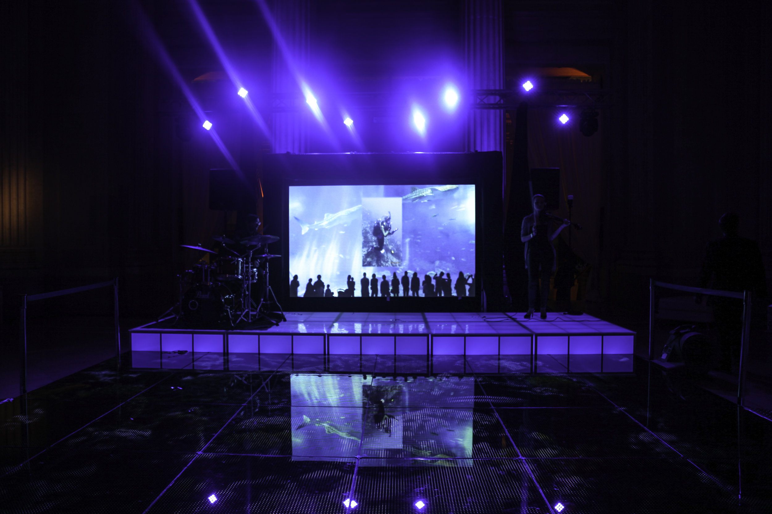 Staging-LED with Video Wall.jpg