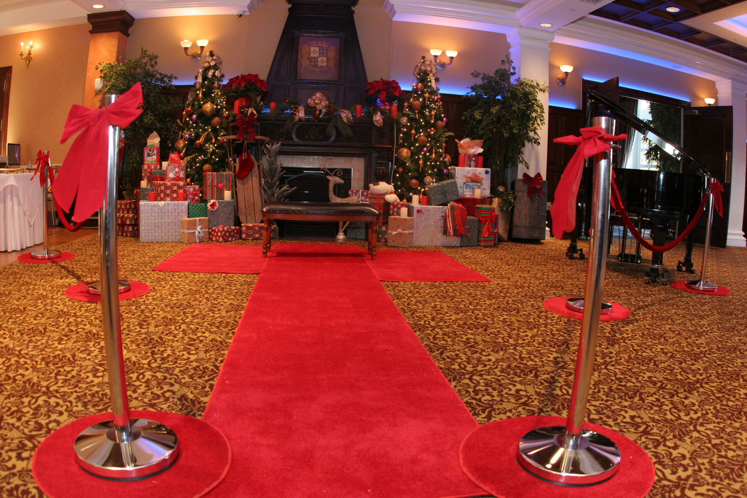 Red Carpet and Stanchions.JPG