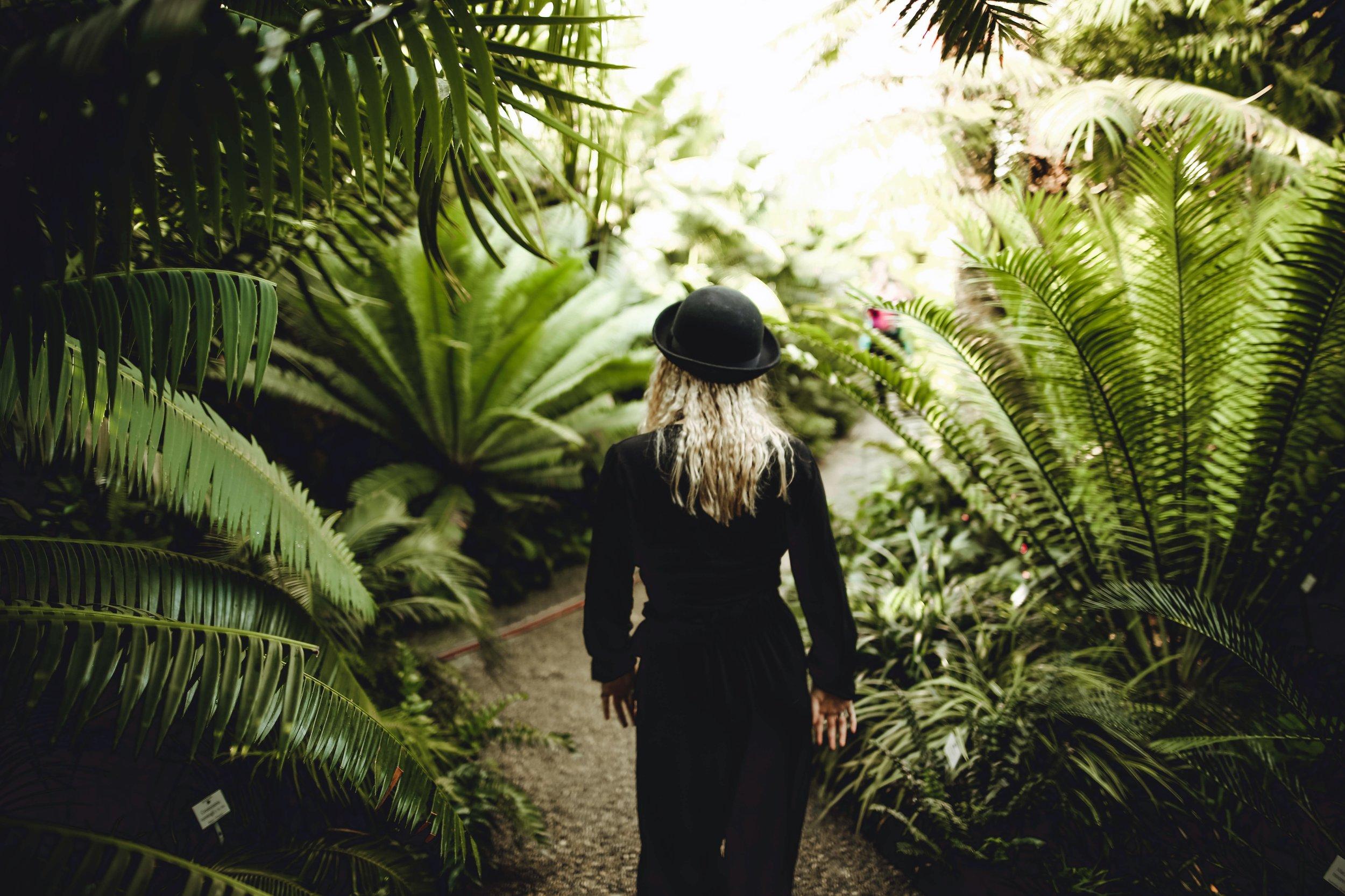 back-view-blonde-blur-596891.jpg