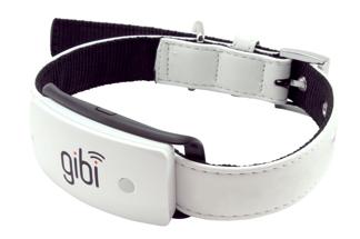 Gibi Pet Tracker