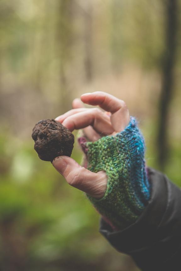 truffle in hand.jpg