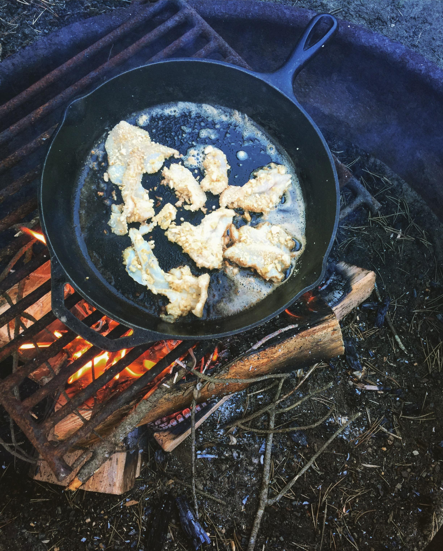 razor clams on the camp fire.JPG