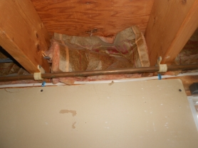 Basement Rim Joist - fiberglass insulation