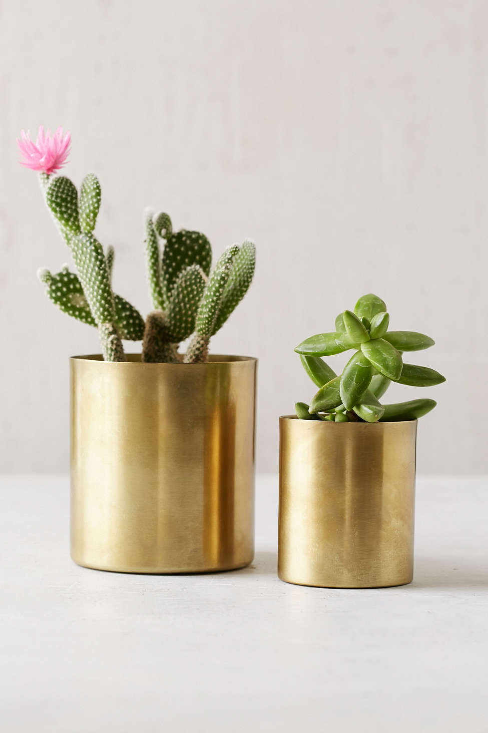 Mod Metal Planter from  Pottery Barn