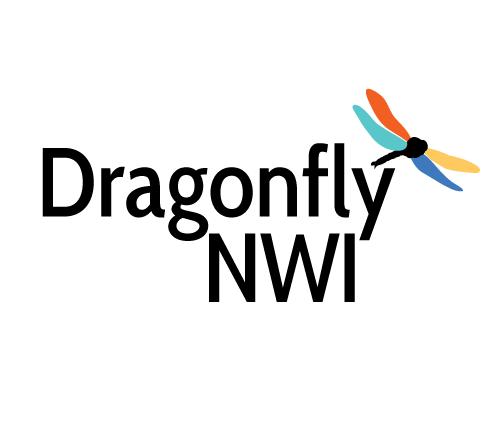 Dragonfly NWI