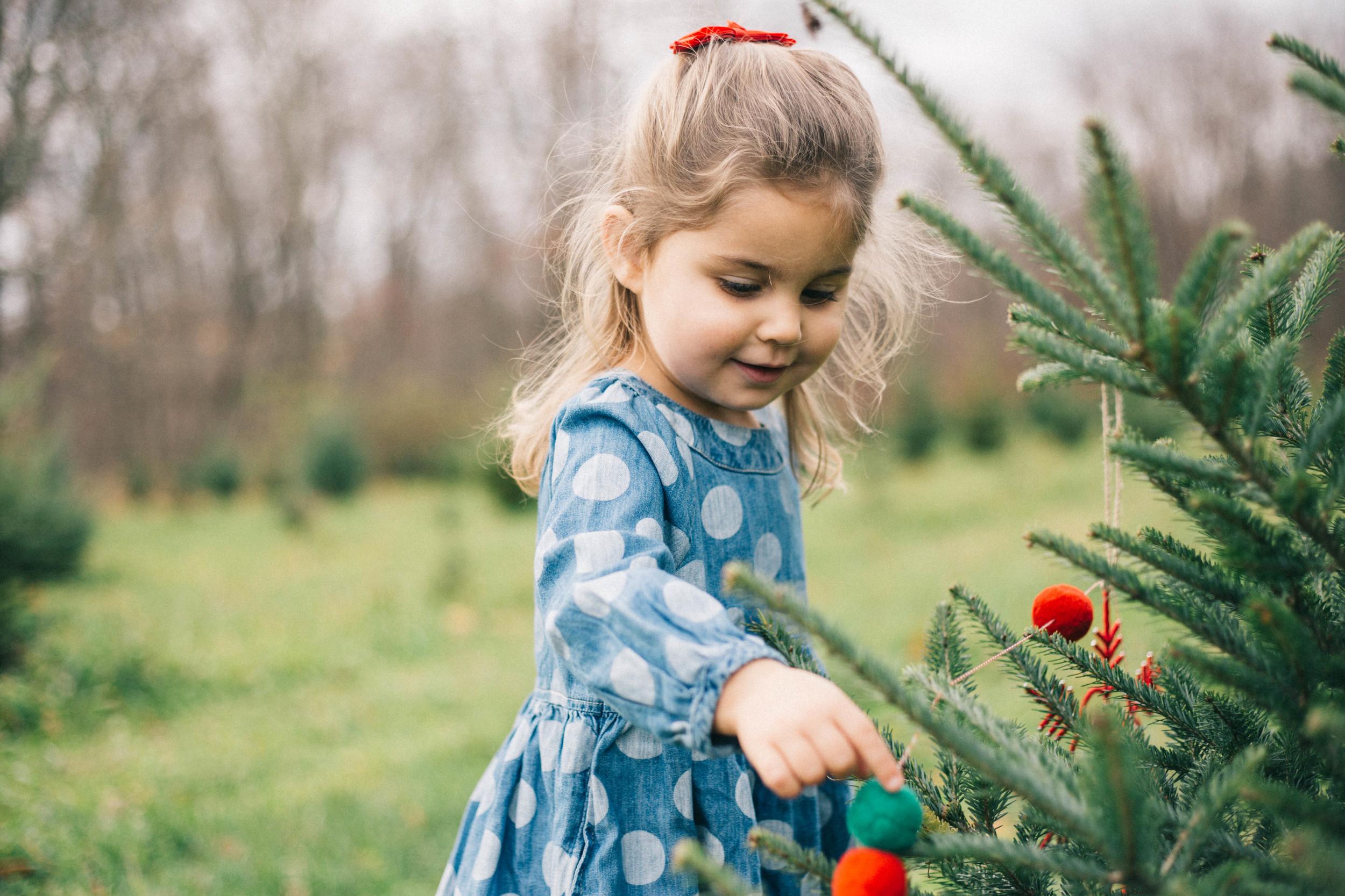 christmas_tree_trimming