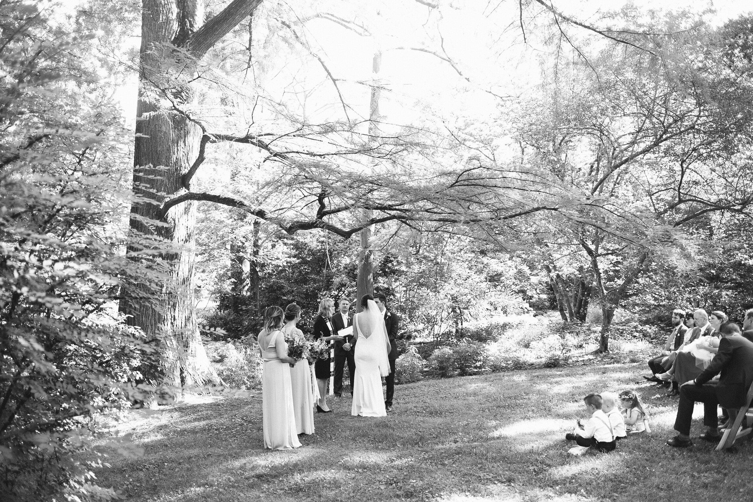 coker_arboretum_wedding_ceremony