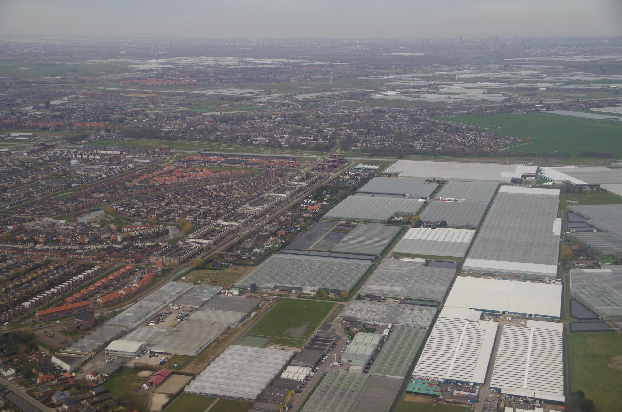 Greenhouses in the Netherlands. Photo: Pieter Edelman