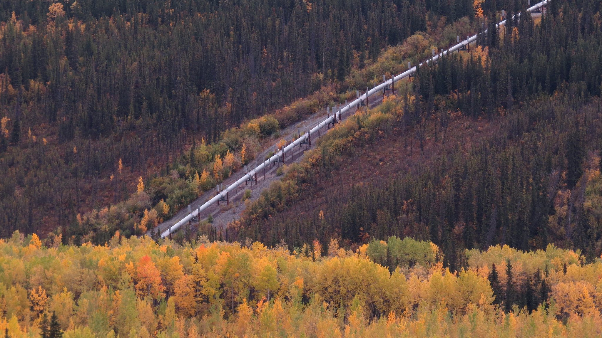 An oil pipeline near the Copper River in Alaska.  Photo: Luke Jones.