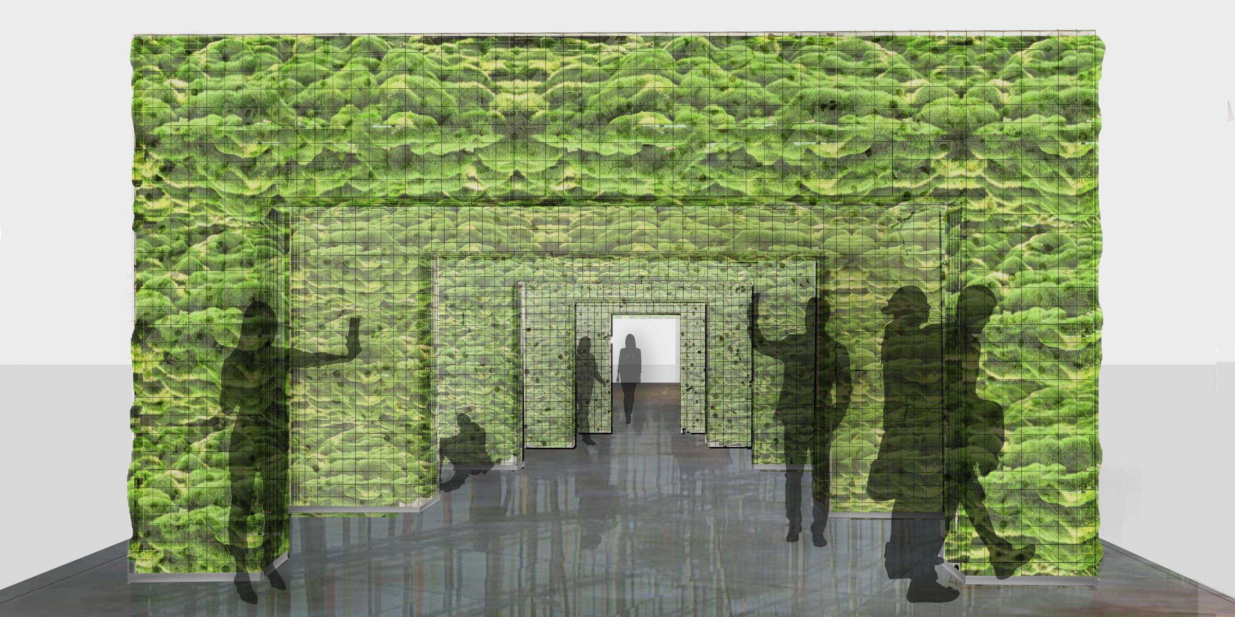 UnFlushed Walls 02.jpg