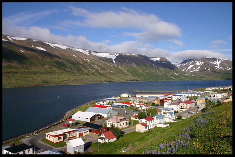 DON'T BOTHER WITH: ICELAND    Iceland has an oversized reputation as a haven for dissidents; it's known to be a friend of Julian Assange and WikiLeaks, and it's one of only a couple nations worldwide with a legitimate representation from the free-internet-loving Pirate Party. And in fact a member of Iceland's Pirate Party has suggested that  Snowden could seek asylum in Iceland. Unfortunately, the Pirate Party is an extreme minority party in Iceland, and the rest of the country doesn't seem all that keen to provide asylum to someone the US is hunting for. The  Washington Post investigated why--turns out Iceland's government has recently taken a turn to the right, and may not have any desire to anger the US.