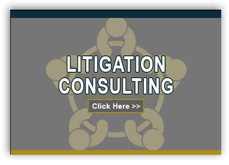 LitigationConsulting_Box2.png