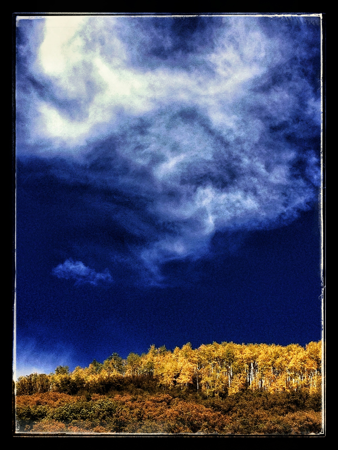 I designed this aspen grove and the clouds above.