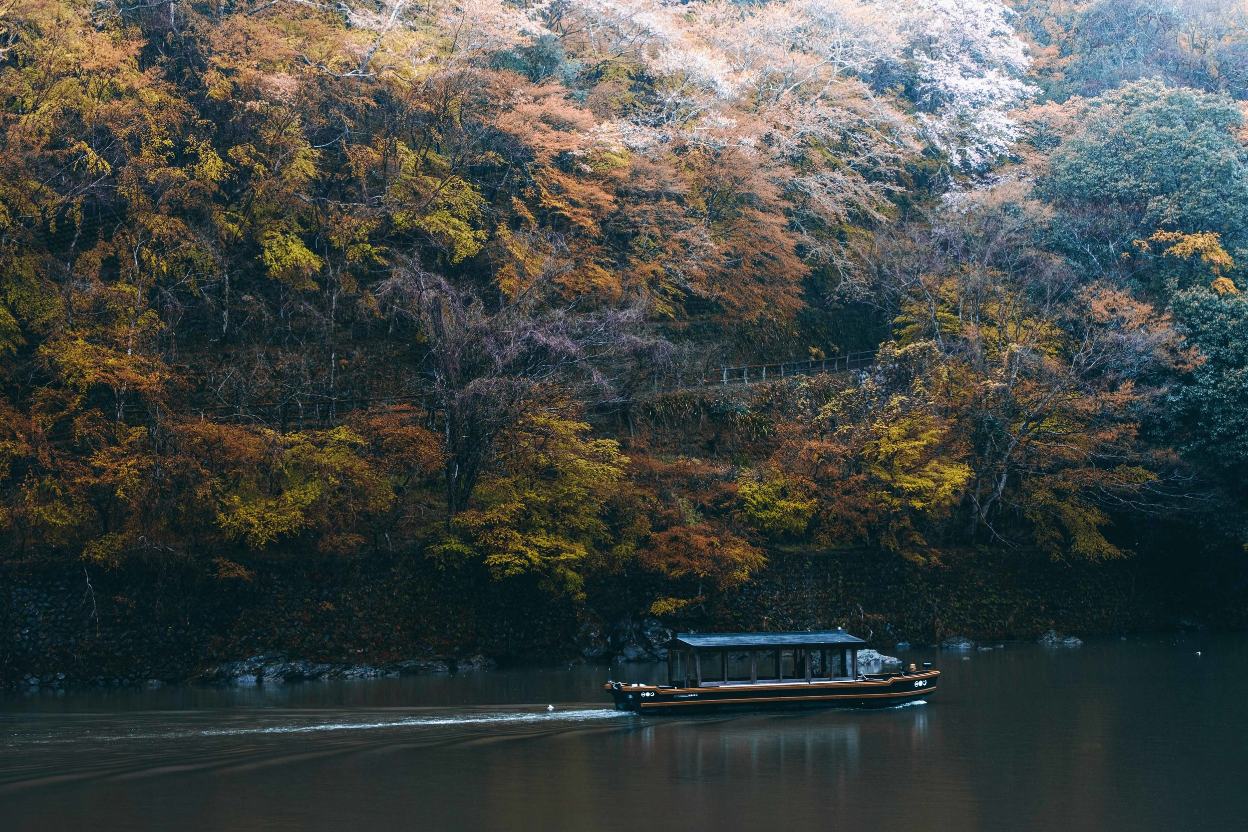 Japan-DSF5295-Post.jpg