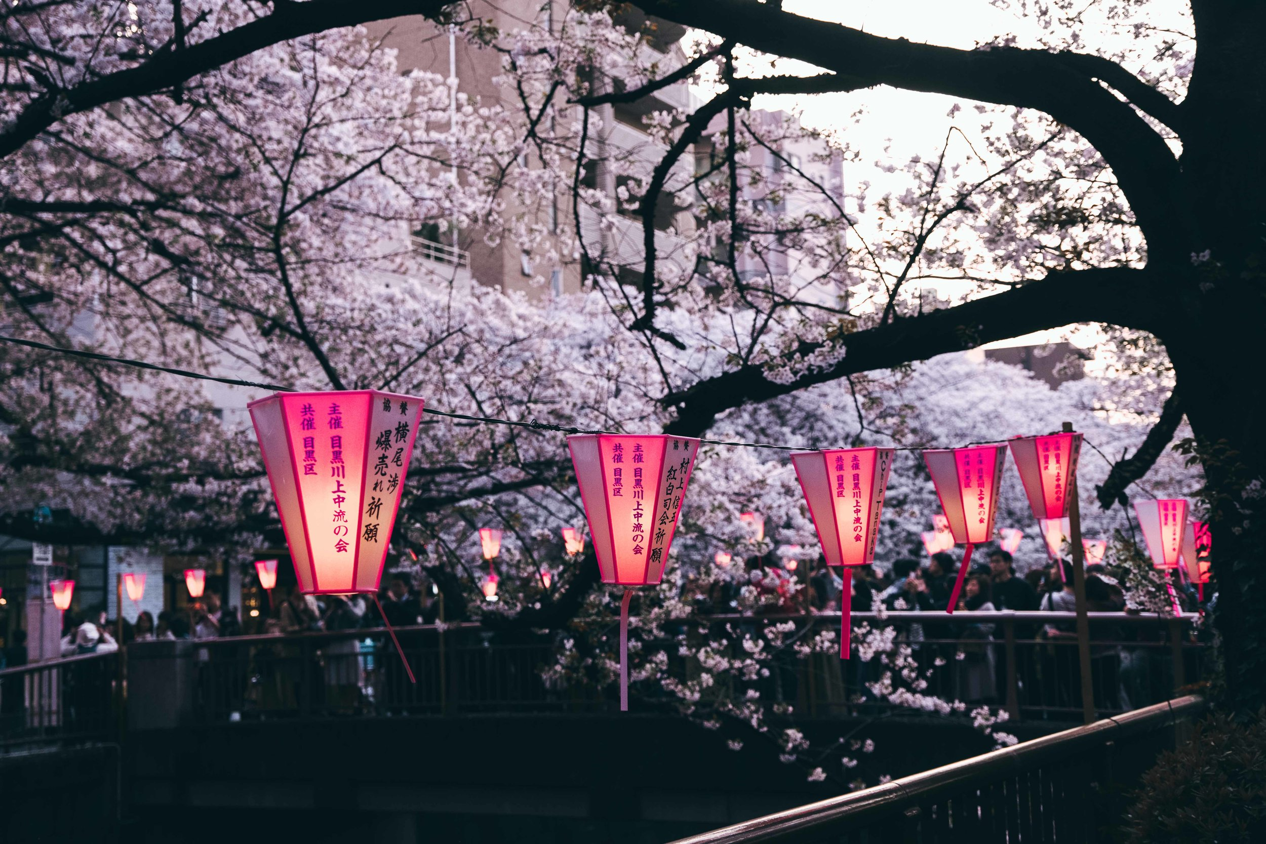 Japan-DSF2208-Post.jpg
