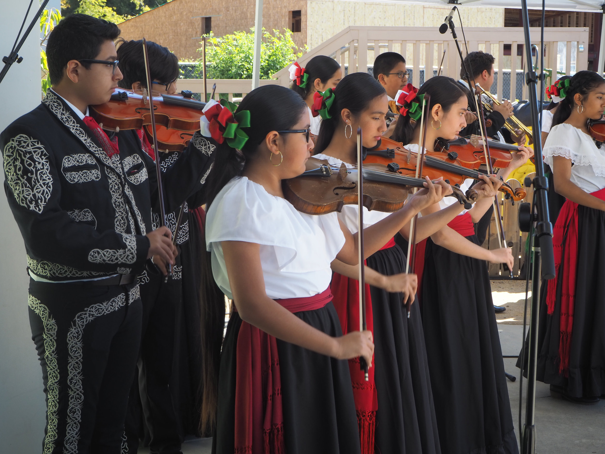 Mariachi Ensemble