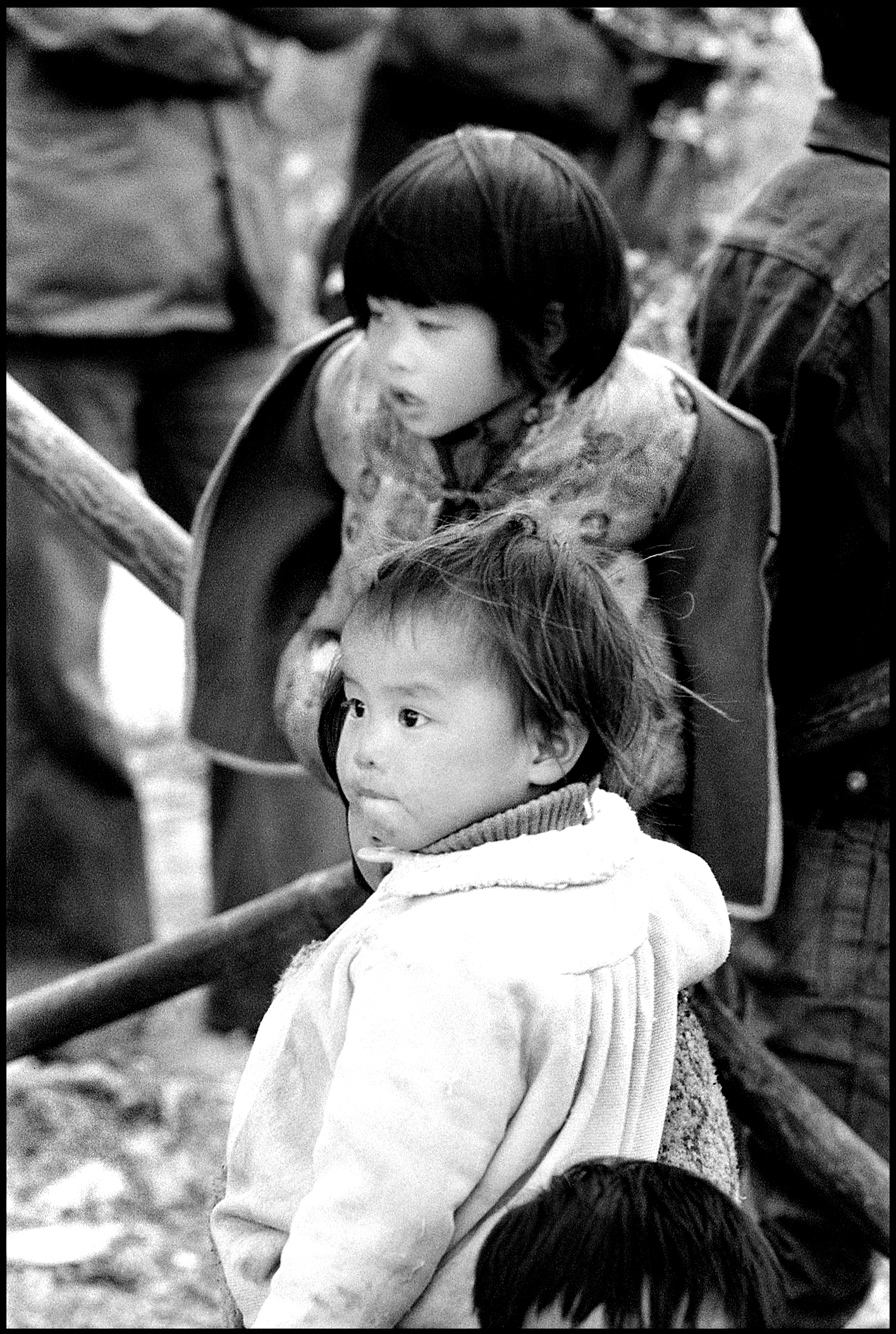 Hong Kong, New Territories   1977    Photograph by Frank Habicht