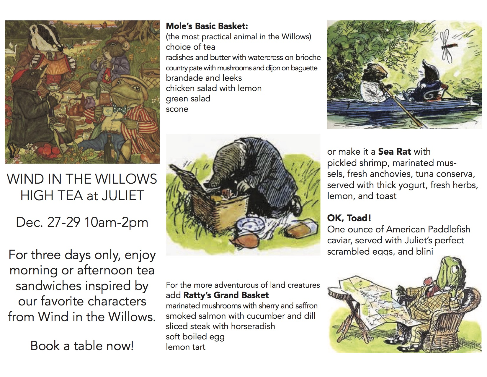 tea in the willows trifold.jpg