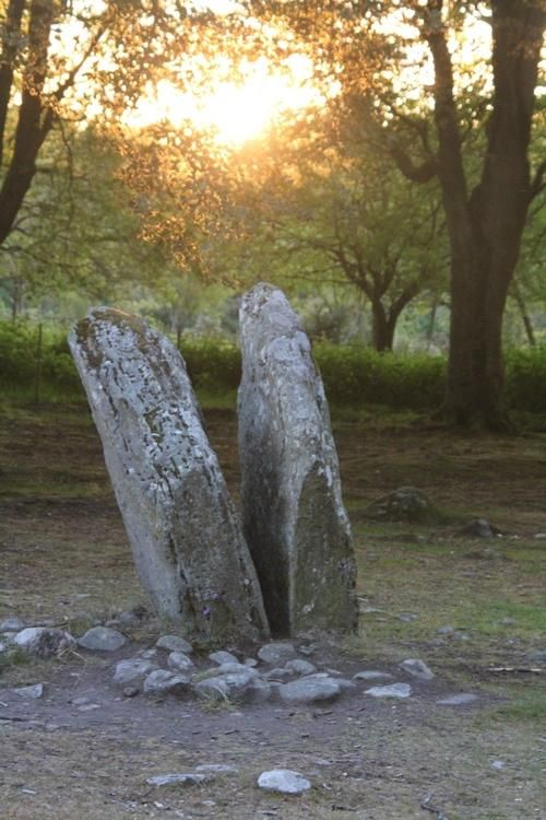 Standing stones at Clava Cairns