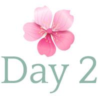 day-logo-2.jpg
