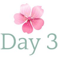 day-logo-3.jpg