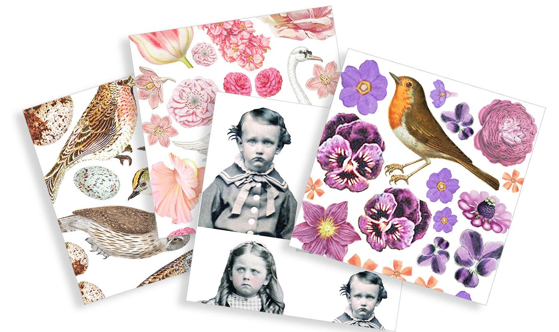 bird-sheets.jpg