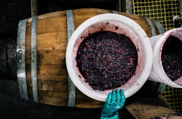 barrel-and-grapes-607x400.jpg