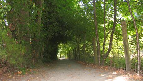 Deer Lake Park 8.jpg