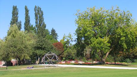 Deer Lake Park 4.jpg