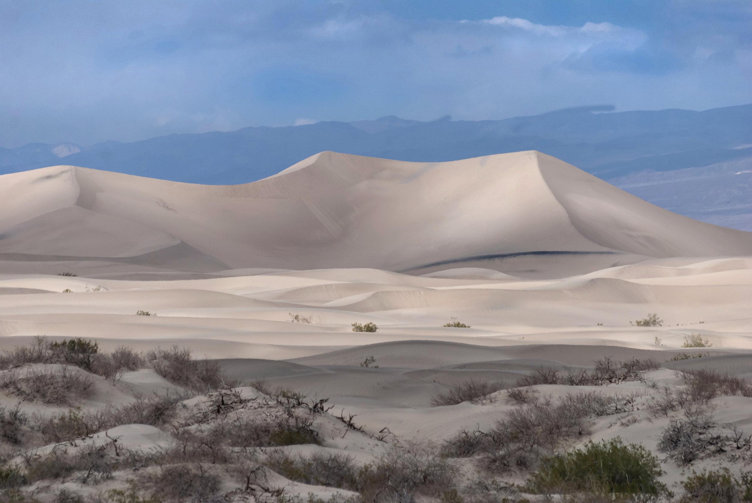 Death Valley Mesquite Dunes