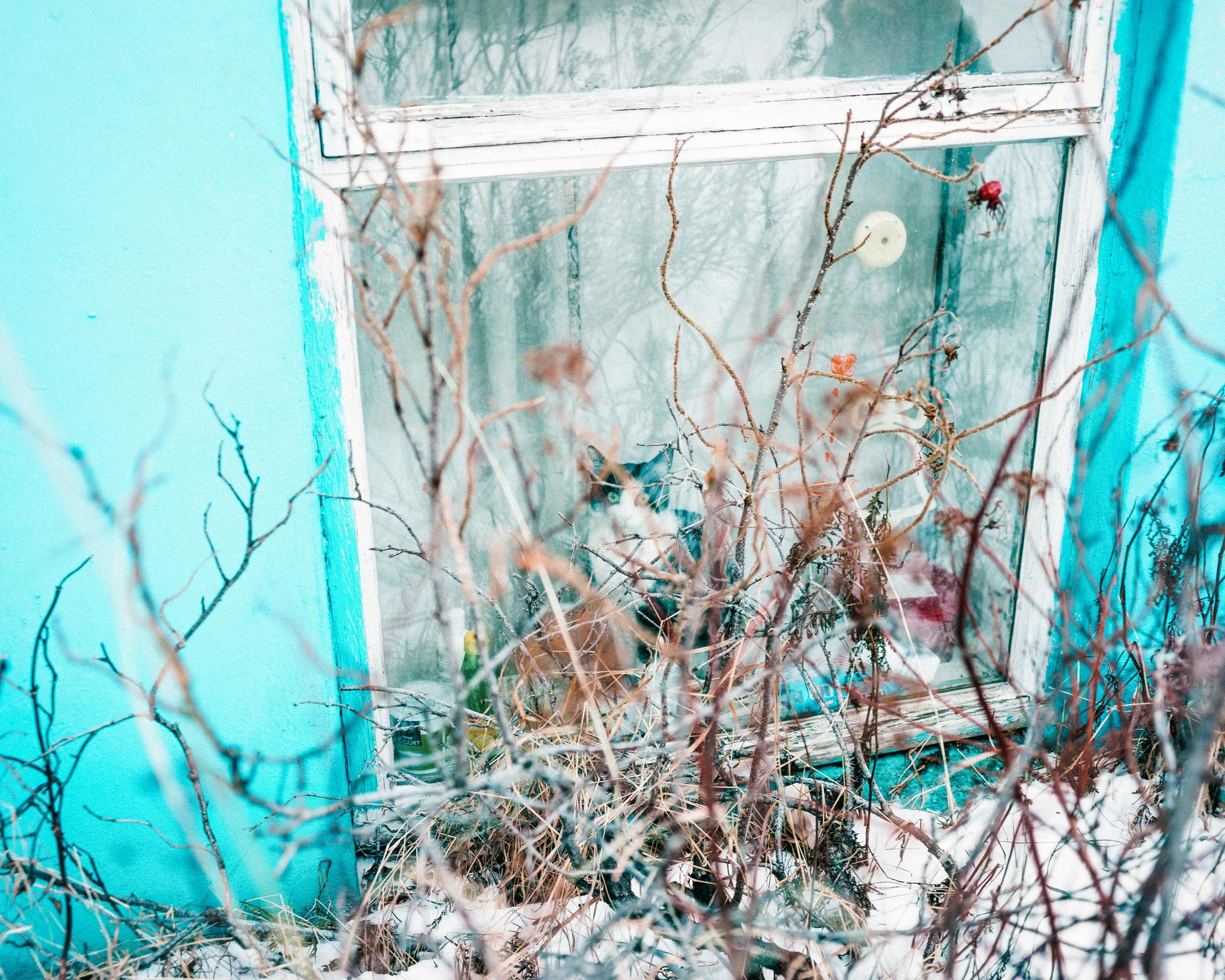 iceland_34_DSC00899-Edit.jpg