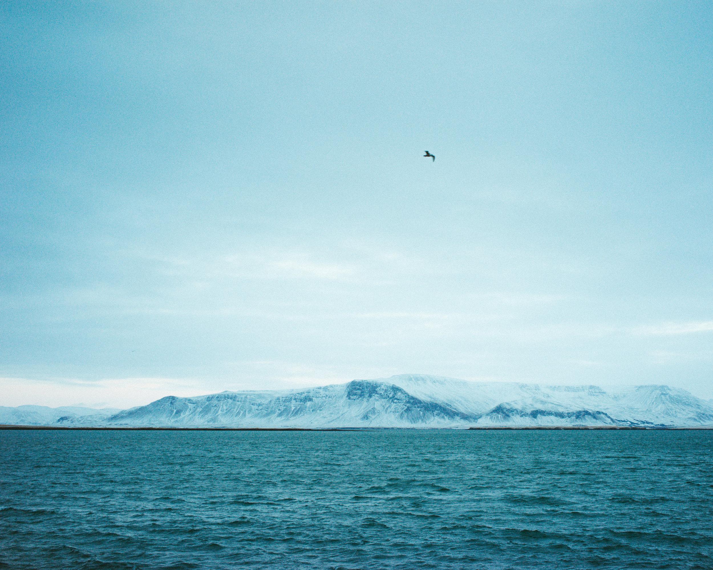 iceland_37_DSC00923.jpg