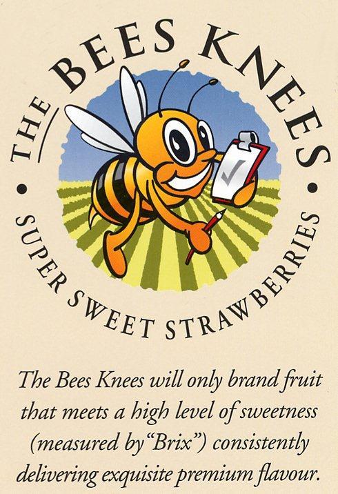 BeesKnees-1.jpg