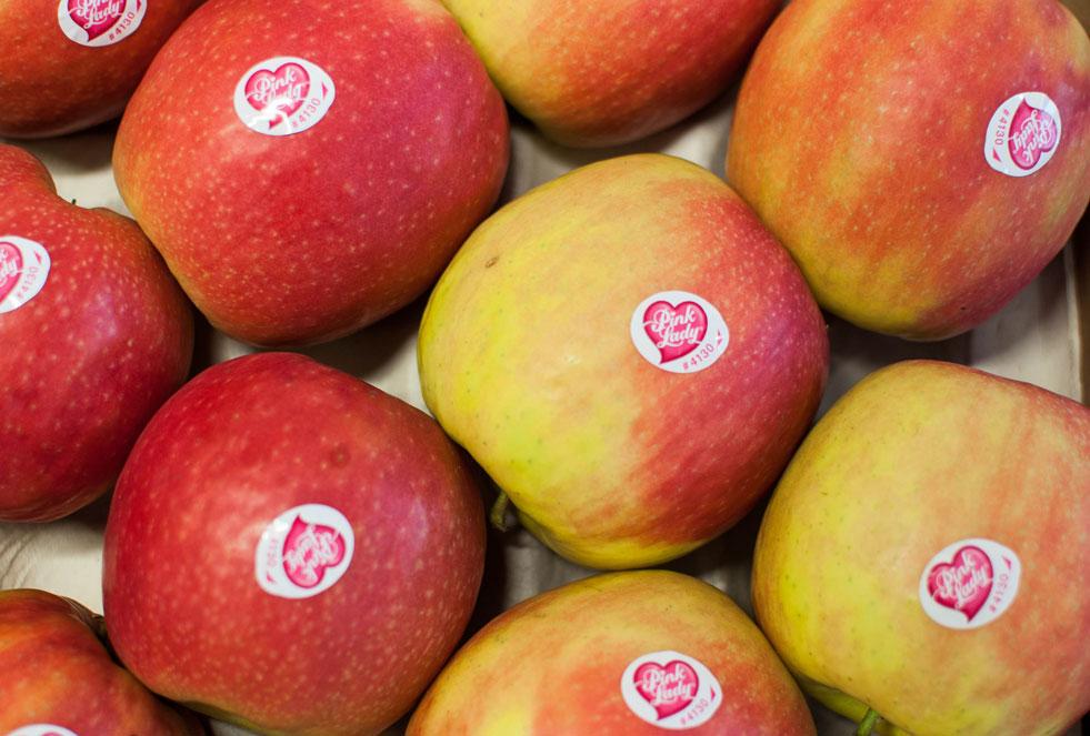 manzana-pink-lady.jpg