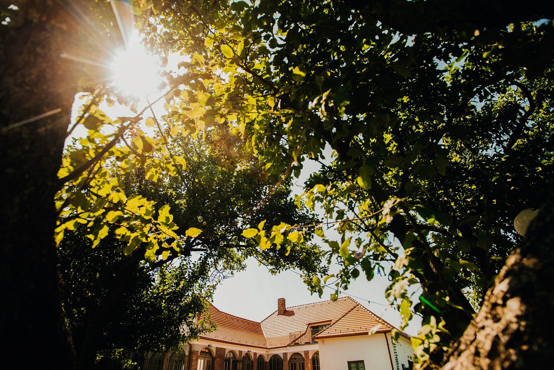 1 rustic outdoor wedding in vineyards 013.jpg