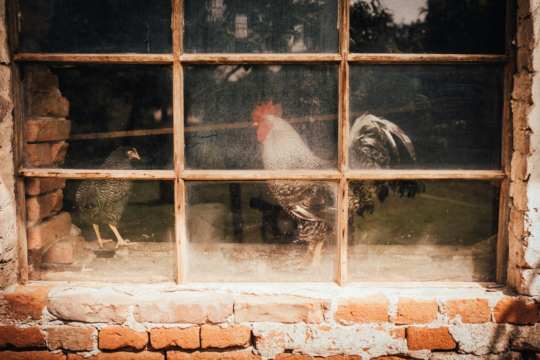 k&p relaxed hipster barn wedding 008.jpg