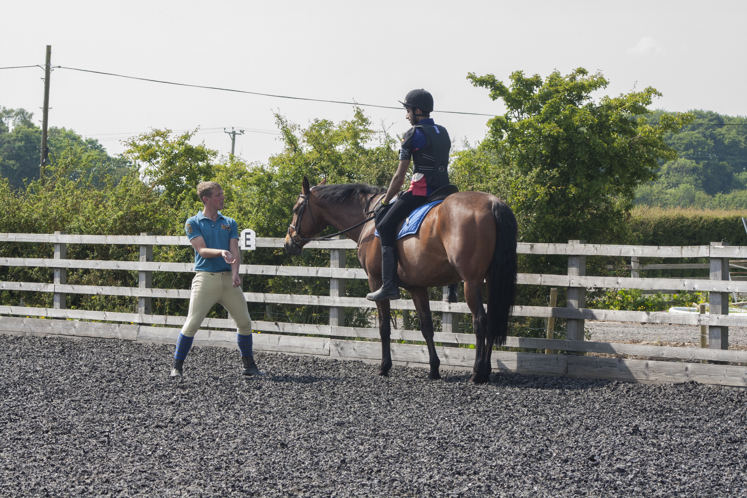 york-riding-school-lessons.jpg