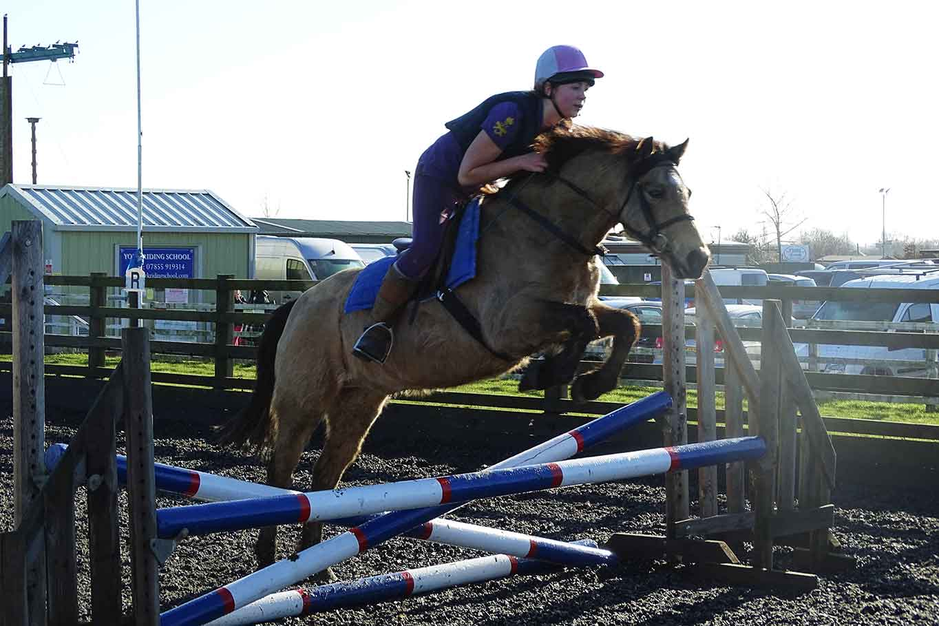 horse-jumping-clinic-york-riding-school.jpg