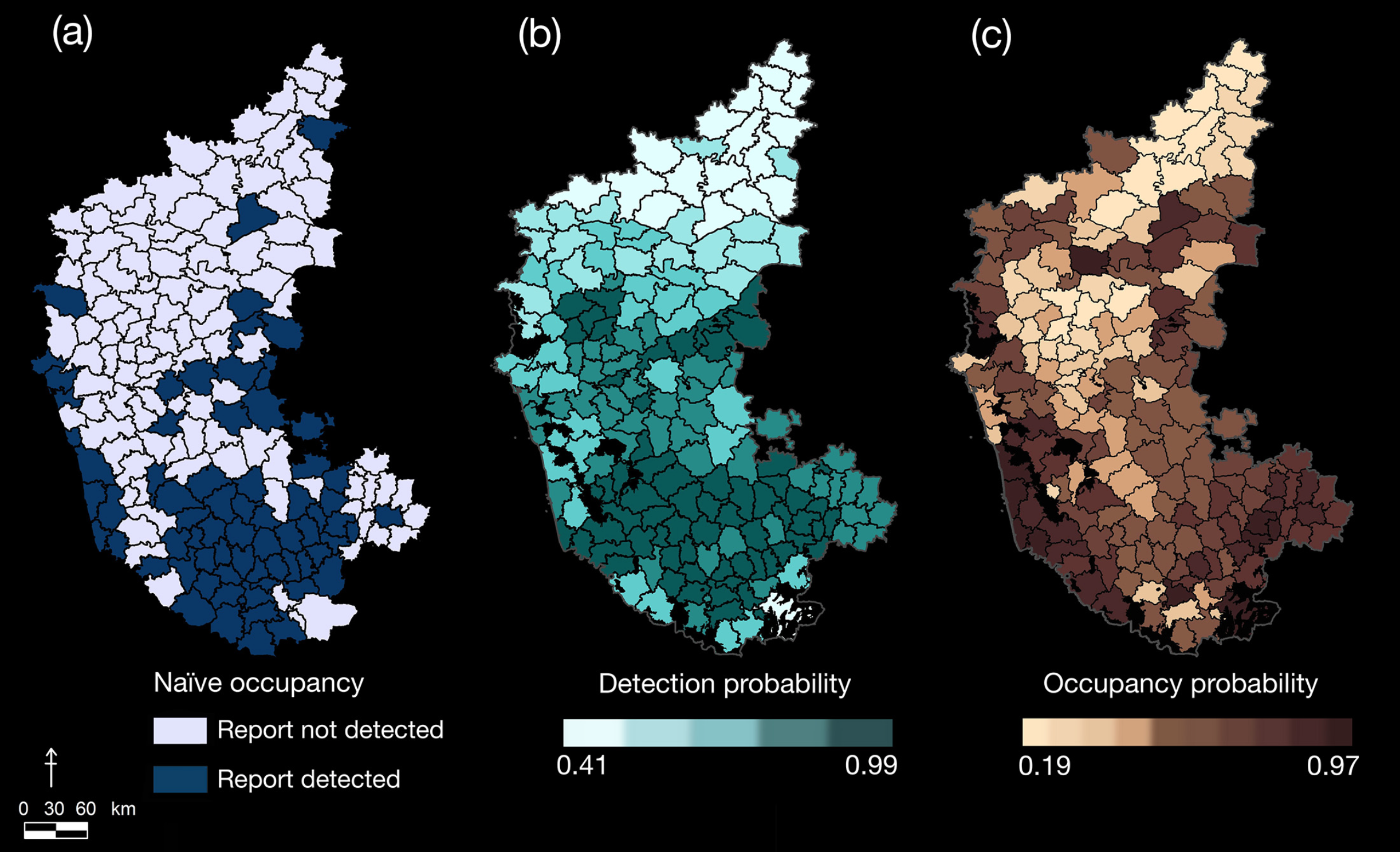 Distribution patterns of leopards in Karnataka. Spatial distribution of leopards outside protected reserves of Karnataka, based on analysis of media reports. The maps show sub-district-level estimates of (a) naive occupancy [detected at least once], (b) detection probabilities [probability of 1 individual being detected], and (c) probabilities of occupancy [probability that they are in that region]. Protected reserves have been clipped out from the predicted probability maps.