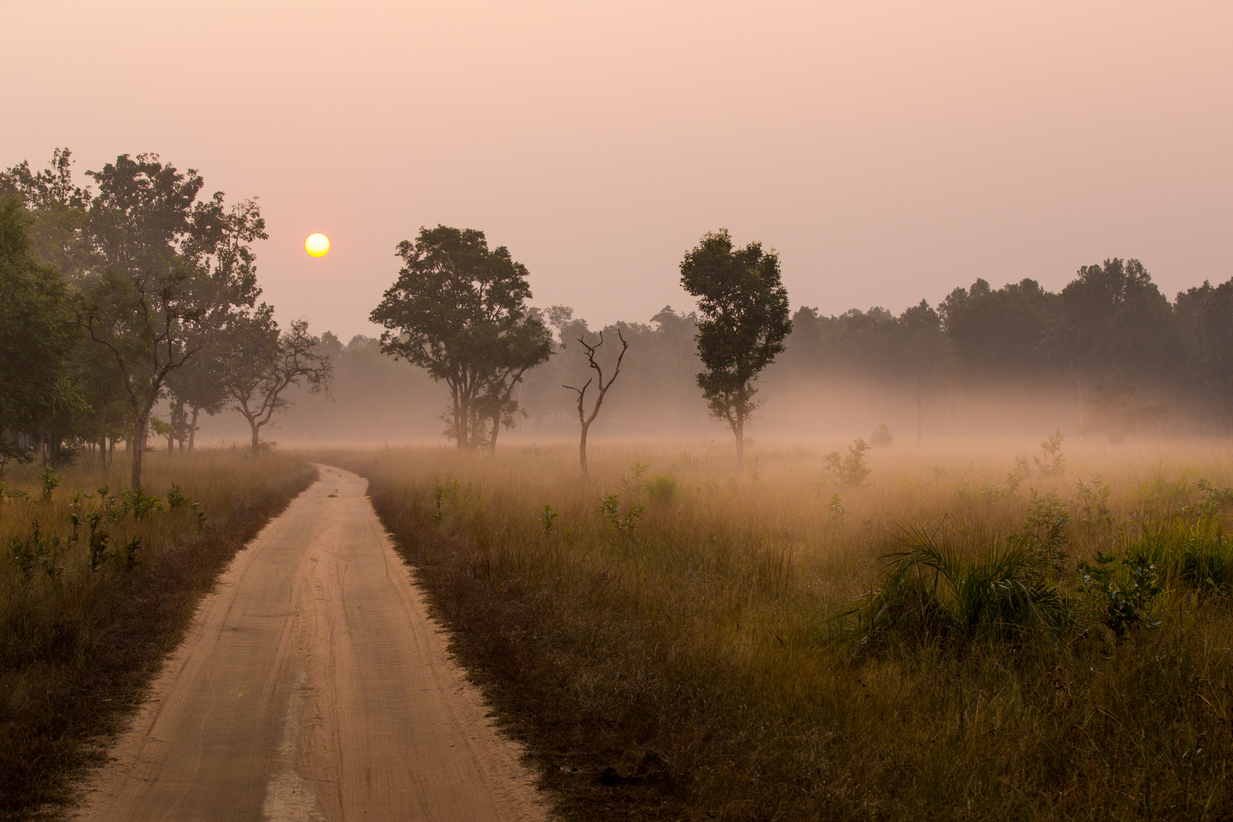 The sunrise and morning mists invites imagination. CLICK IMAGE for full screen.
