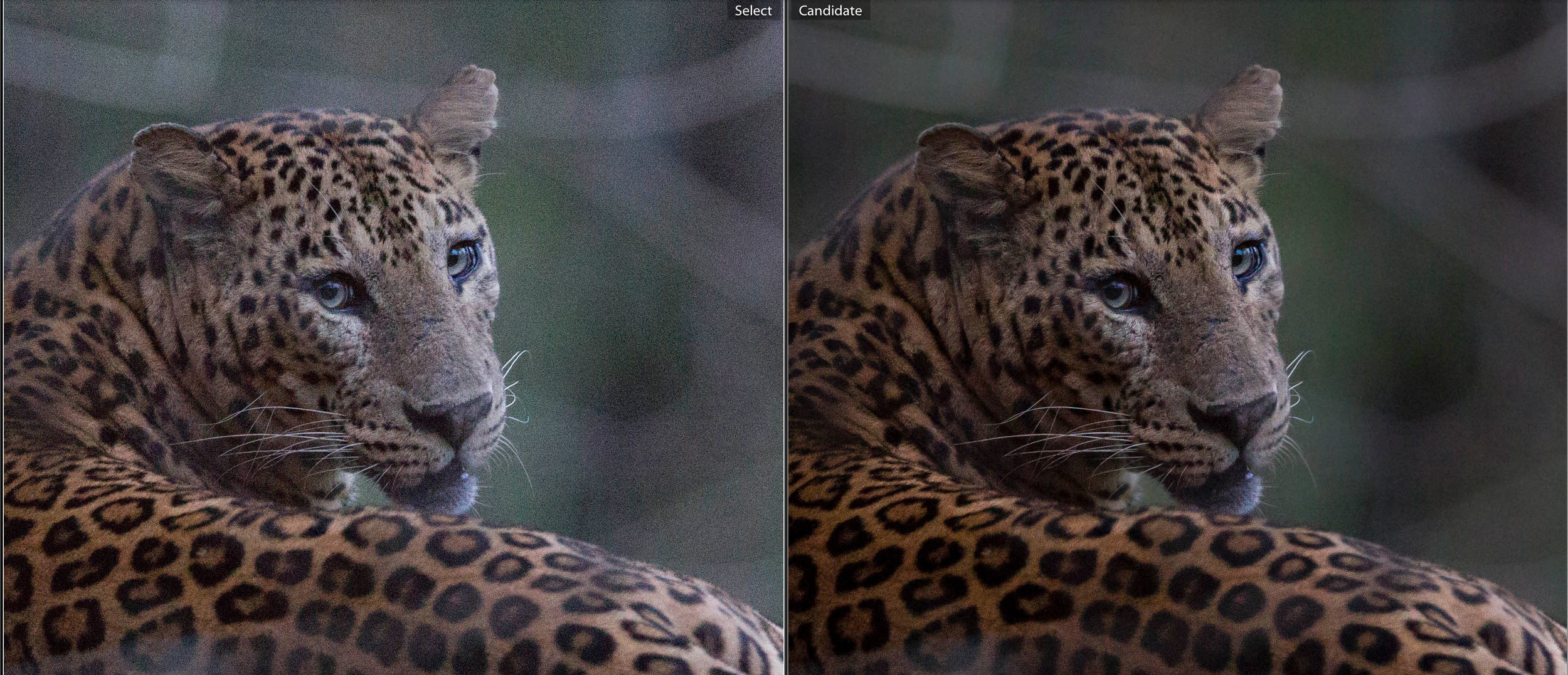 Before (left), and after (right) post-processing