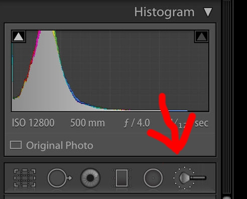 Local Adjustments brush in the develop module of Lightroom