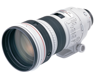 The mighty 300mm f/2.8L IS I