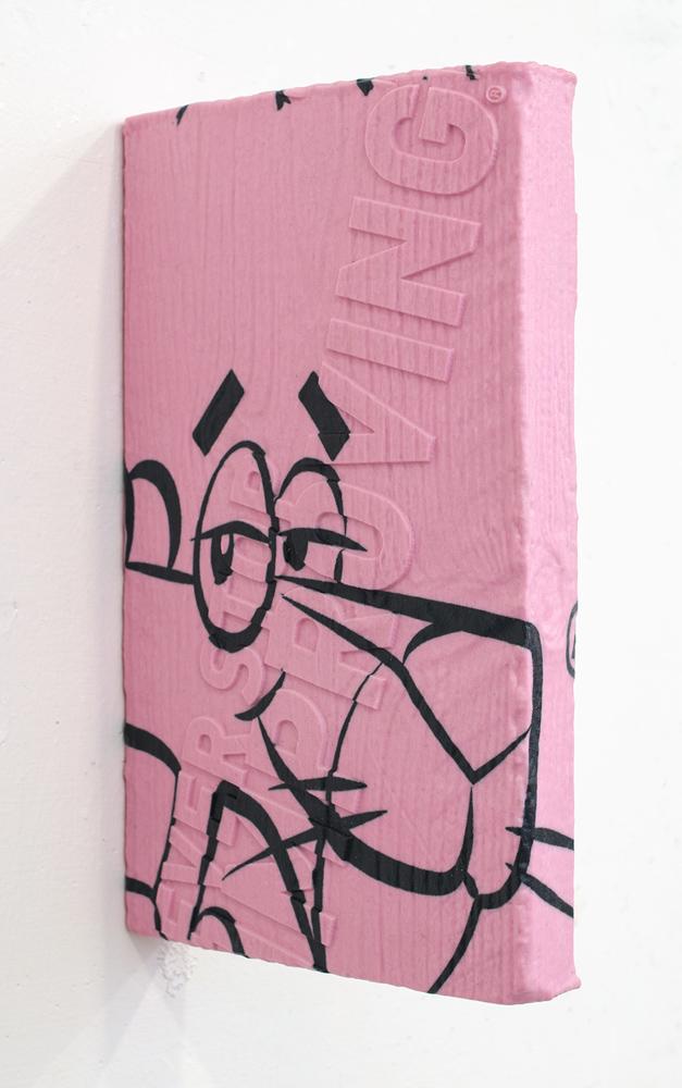 Ethan Greenbaum   NSI , 2015  3D Powder print, UV varnish  10 x 1.5 x 6 inches