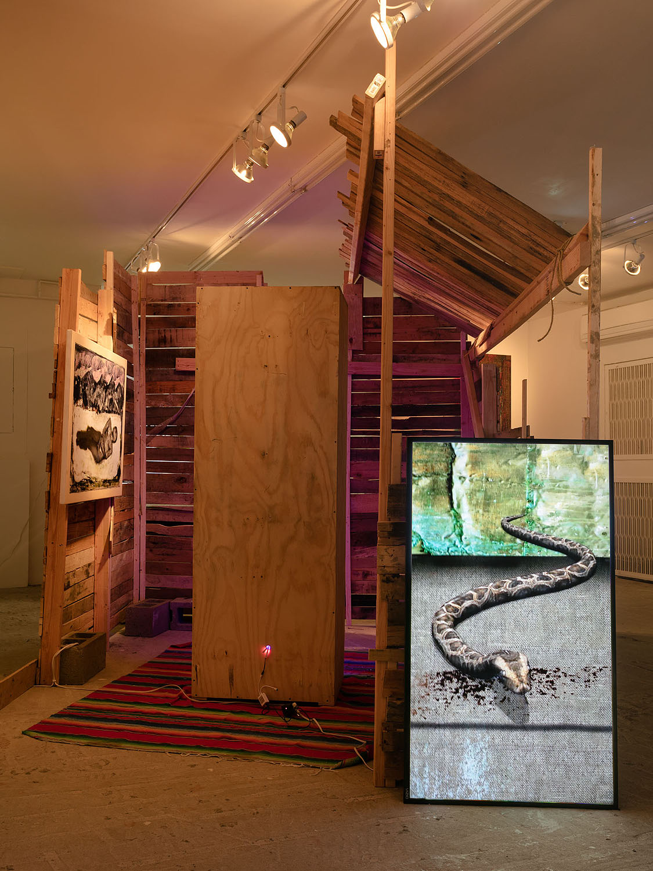 Markus Selg    Snake, 2015  Video, HD loop  1 minute, 7 seconds