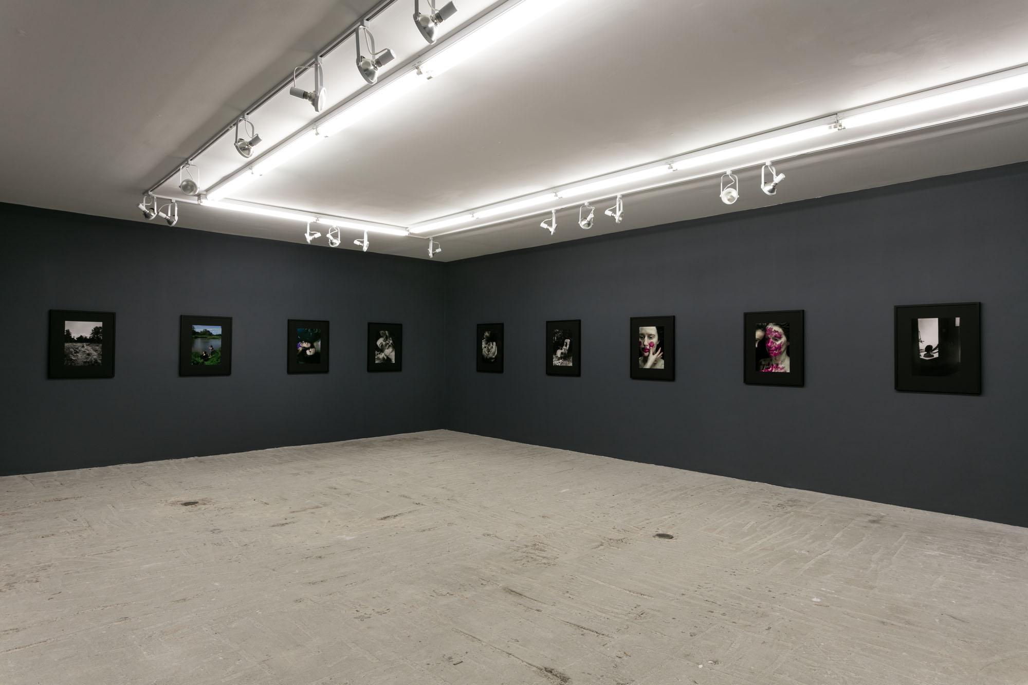 Aneta Grzeszykowska,  Mama,  Installation view at Lyles & King, October 14 - November 18, 2018